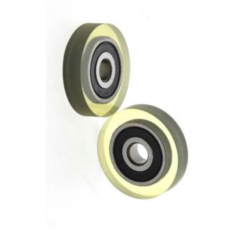 7X7 7X10 7X14 Zb AISI 52100 Cylindrical Roller for Rolling Bearing