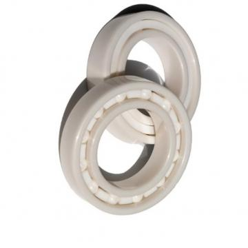 Stock BS 22218 22228 W33c3 Roller Bearing with Polymer Shields -30 Degrees